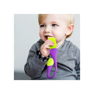 NEW BOON Gnaw Teething Teether & Snack Holder Rusk Clip