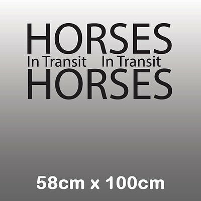 Large Horses In Transit - Horsebox Trailer Vinyl Stickers Decals Graphic