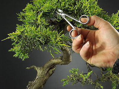 Professional Quality Stainless Steel Bonsai Tools - Fine Wire Scissors 120mm