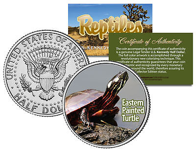 EASTERN PAINTED TURTLE *Collectible Reptiles* JFK Half Dollar US Colorized Coin