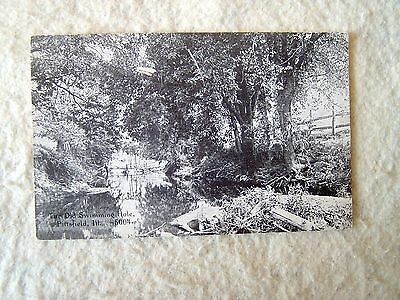 THE OLD SWIMMING HOLE, PITTSFIELD, ILLINOIS - EARLY 1900'S POST CARD