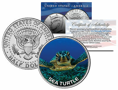 SEA TURTLE JFK Kennedy Half Dollar U.S. Colorized Coin