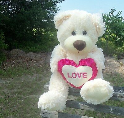 Any LOVE occasion! Teddy Bear pink roses heart Valentines Day stuffed animal