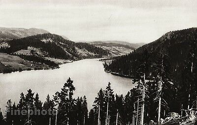 1924 Vintage SCANDINAVIA Photo Art Sweden Angermanland Forest Mountain Landscape