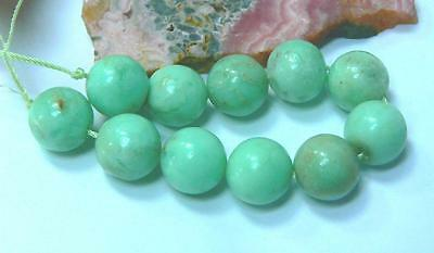 11 RARE NATURAL UNTREATED AUSTRALIAN APPLE GREEN CHRYSOPRASE ROUND BEADS 12mm