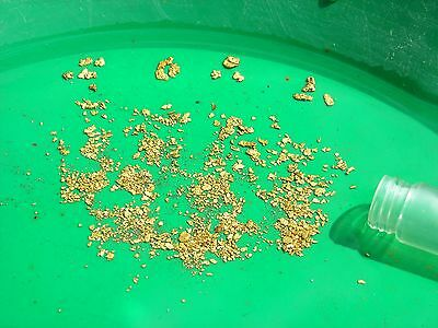 5 lbs of Gold Concentrates - Panning PayDirt Guaranteed nuggets/pickers flakes