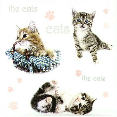 4x Single Table Party Paper Napkins for Decoupage Decopatch The Cats