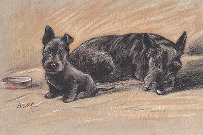 Scottish Terrier Dog w Puppy 1930's by L. Dawson LARGE New Blank Note Cards