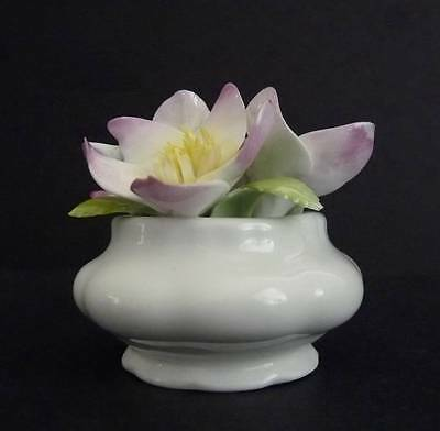 ROYAL ALBERT BONE CHINA FLOWER OF THE MONTH FIGURINE CHRISTMAS ROSE DEC. COLLECT