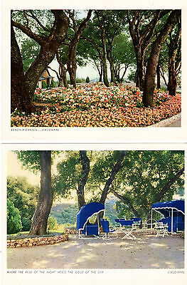15 Vintage Postcards of Jimsomare, Cupertino, California Ca