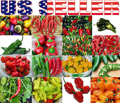 30+ ORGANICALLY GROWN Hot Pepper Mix Seed 16 Varieties Heirloom NON-GMO Habanero