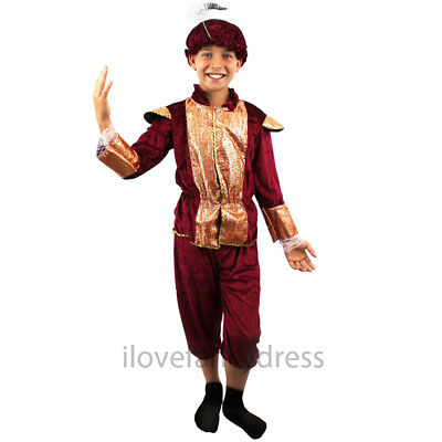 PRINCE CHARMING MEDIEVAL RICH TUDOR BOY ROMEO KIDS FANCY DRESS COSTUME