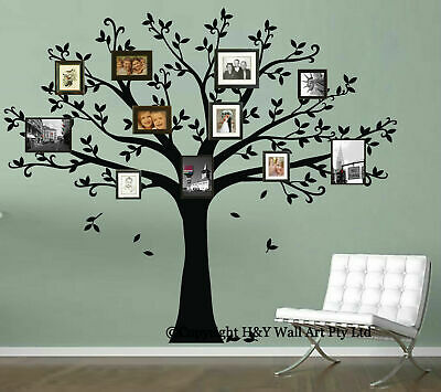 Family Tree Removable Wall Sticker Vinyl Decal Home Decor Art Mural Branch Photo
