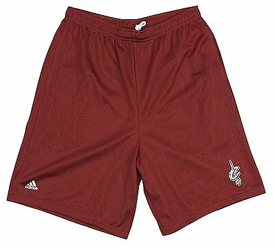 Adidas NBA Men's Cleveland Cavaliers Basketball Mesh Shorts - Wine Red