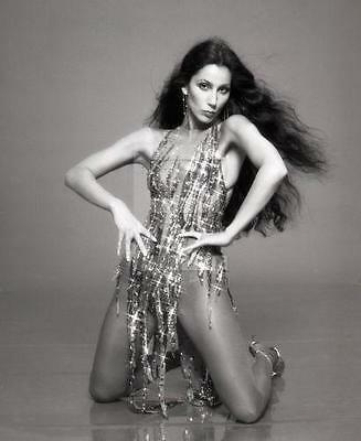 CHER 8x10 to 24x36 Photo Poster Canvas Wall Adhesive by LANGDON HL790