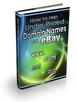 Find Under-Priced Domain Names on eBay Expert Training