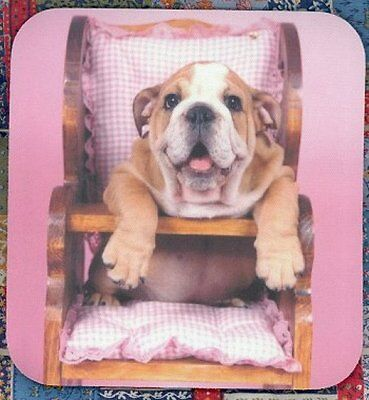 BULLDOG PUPPY in High Chair Heavy Rubber Backed Mousepad #0635