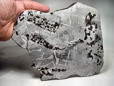 Great Deal! Amazing Crystals! Transitional Seymchan Pallasite Meteorite 1960 Gms