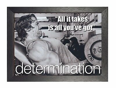 Arni Determination All It Takes Arnold Schwarzenegger Motivation Poster Photo