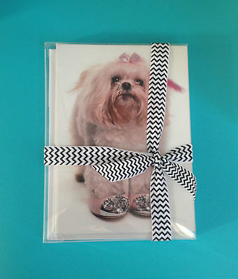 Maltese Greeting Cards 10 Pack Dog Pet All Occasion Blank Message Puppy Gift Box