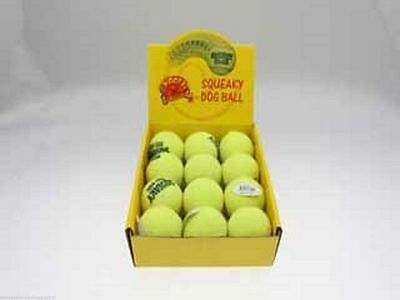 48 x Dog Puppy Tennis Balls Squeaky in Display Box Fun Play Toy  Wholesale lot