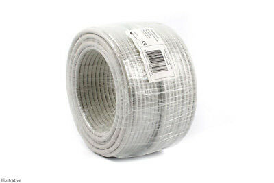 Professional CAT6 Cable (100m)