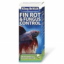 PET-75892 King British Fin Rot & Fungus Control (100ml)