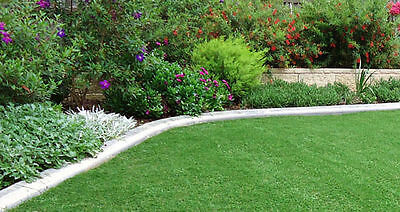 Artificial Grass Lawn Outdoor Indoor Synthetic Turf 20 SQM 10mm Lawn Flooring