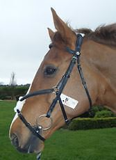 Becker Mexican Grackle Bridle Equine Horse Tack & Equipment