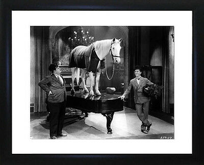 Laurel And Hardy Framed Photo CP0270