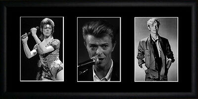 David Bowie Framed Photographs PB0124