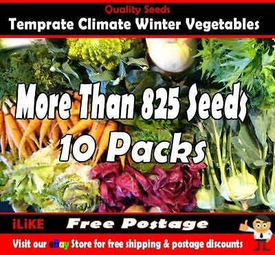 Temperate Climate Winter Vegetable Garden Plant Collection 825 + Seeds. 10 Packs