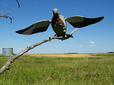 Lucky Duck Dove-N-Air Motorized Flapping Motion Rapid Flyer Dove Decoy New!