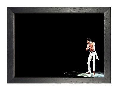 Freddie Mercury 9 Photo Queen Rock Band Legend Picture Vintage Music Poster