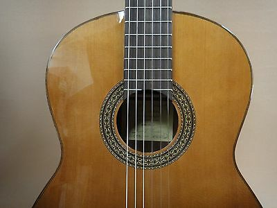 Miguel Almiera 116 Classical Guitar Solid Top + Deluxe Padded Bag + Strings