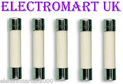 5 X 32Mm Ceramic Fuses Anti Surge Slow Blow Time Delay Microwave Oven Catering