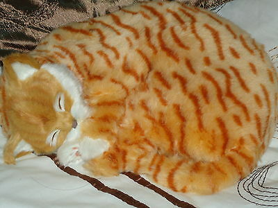 Realistic Life-Like Ginger Sleeping Cat Fooled Many People- House Trained -White