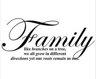 Family Like Branches On A Tree Vinyl Wall Sticker Art Quote Words