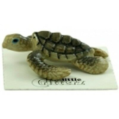 """130106 - """"Dream"""" is an Sea Turtle Baby- Comes in Box w/Story Card"""