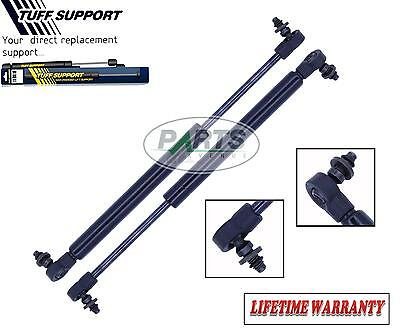 2 Rear Trunk Lid Lift Supports Shocks Struts Arms Props Rods Spyder Convertible