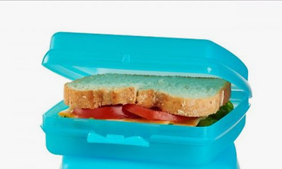 New Tupperware Sandwich Keeper Hinged Lunch Box Cool Aqua Blue Container New