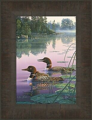 """Northern Tranquility Loon Print By Kim Norlien Image  10/""""x 7/"""" Plus White Margin"""
