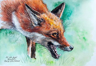 Following the Trail original watercolor fox painting wild pet dog-fox ginger