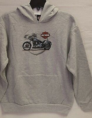 "Harley-Davidson Youth L/S Gray Hooded Pullover ""Duece Steel"" Sweatshirt"