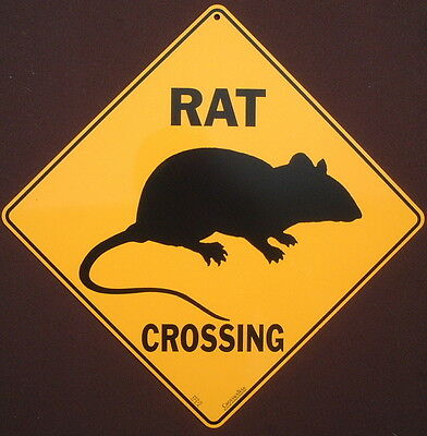 RAT CROSSING SIGN aluminum  decor rats painting picture home wildlife signs pets