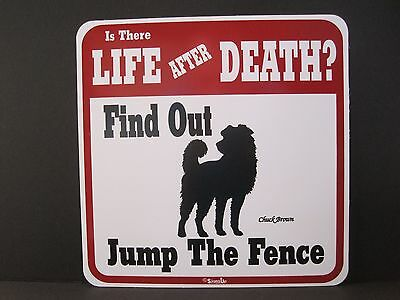 Sign: Is There LIFE AFTER DEATH? Find Out... Jump The Fence