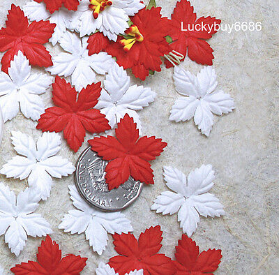 100 Mix Red & White Mulberry Paper Christmas Poinsettias Flower Scrapbook Craft