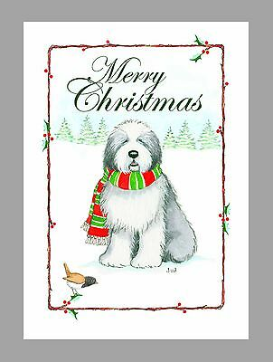 Old English Sheepdog Christmas Cards, Box of 16 Cards & 16 Envelopes