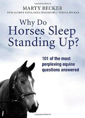 Why Do Horses Sleep Standing Up? 9781409117360 by Marty Becker, Paperback, NEW