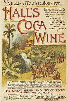 HALL'S COCOA WINE vintage ad poster THE GREAT BRAIN & NERVE TONIC 24X36 new